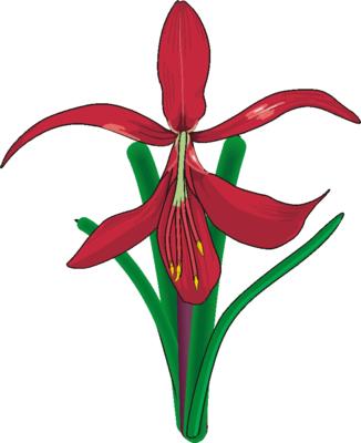 clip art flowers free. Flower Clip Art 9